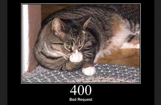 HTTP Status Cats
