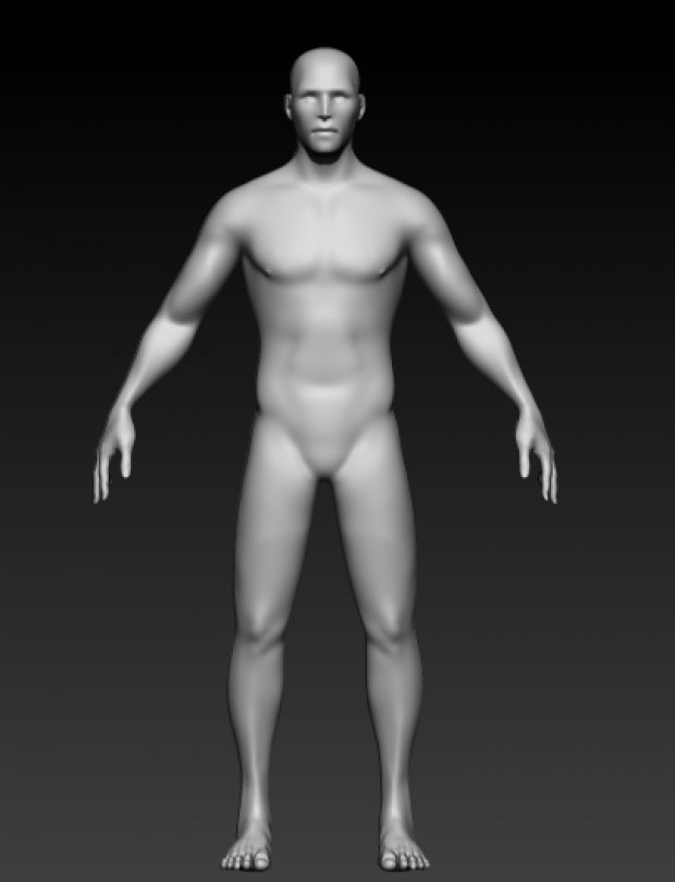 Free 3D models: Male figure