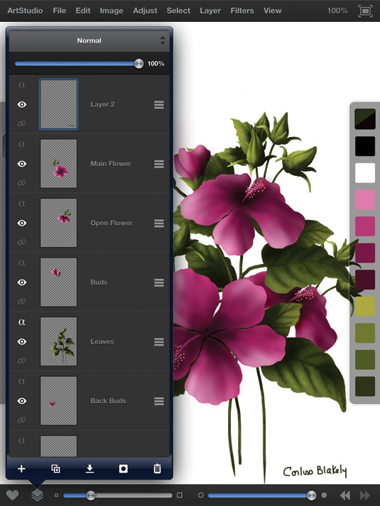 ArtStudio for iPad: control of layers is a cinch