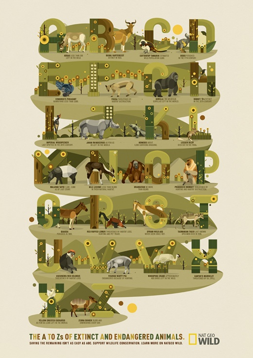 Kinetic - NatGeo: The A to Z of Endangered Animals