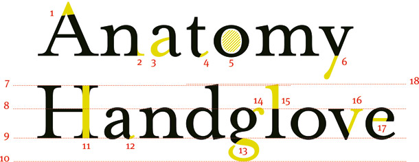 Master web typography: anatomy of a font