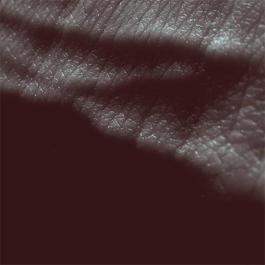 Album Art: JK Flesh