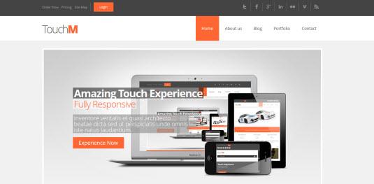 Free Drupal theme: TouchM