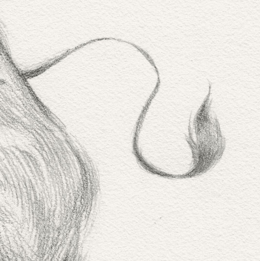 Sketching tips for beginners: Use varied lines