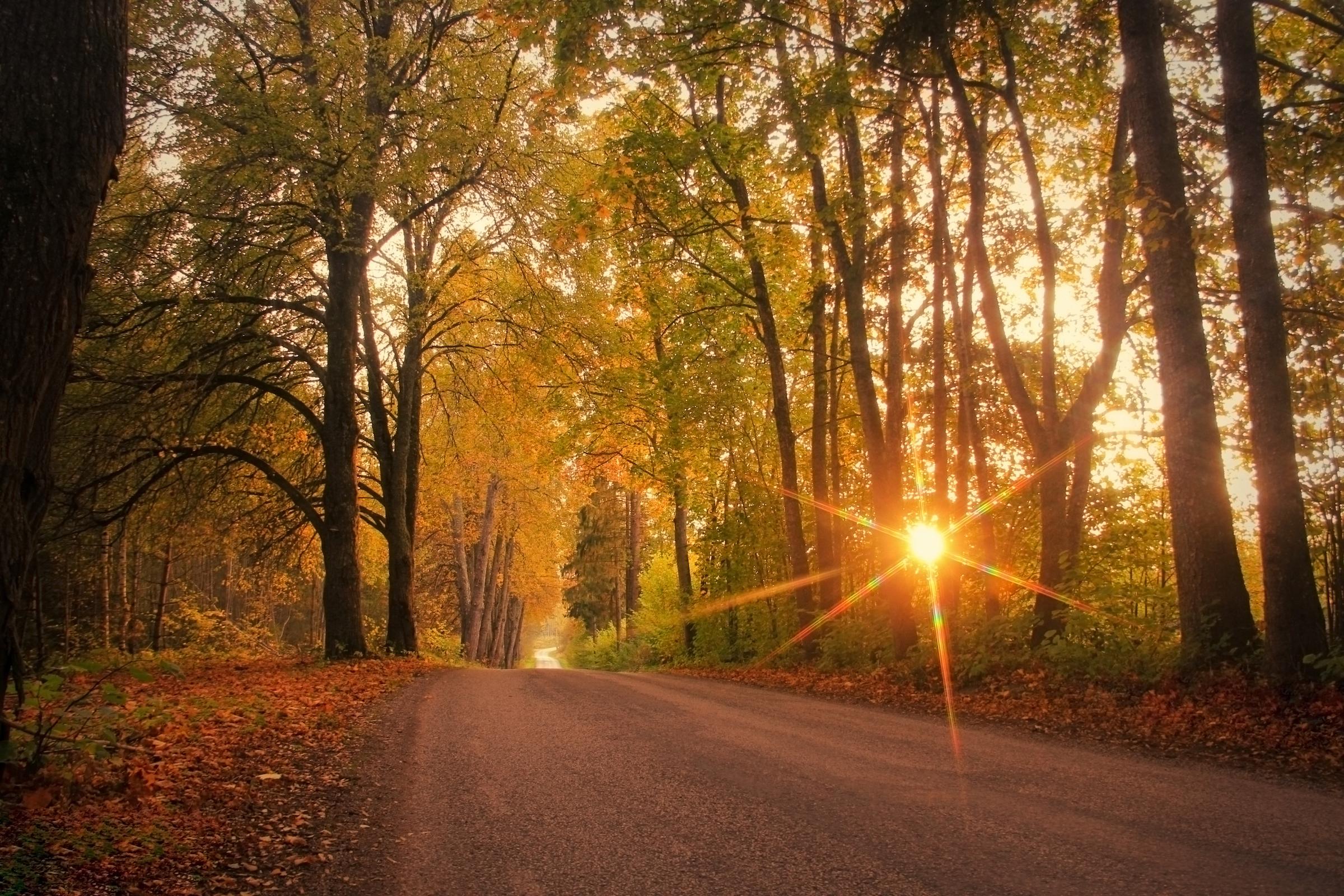 Hello fall! Equinox kicks off