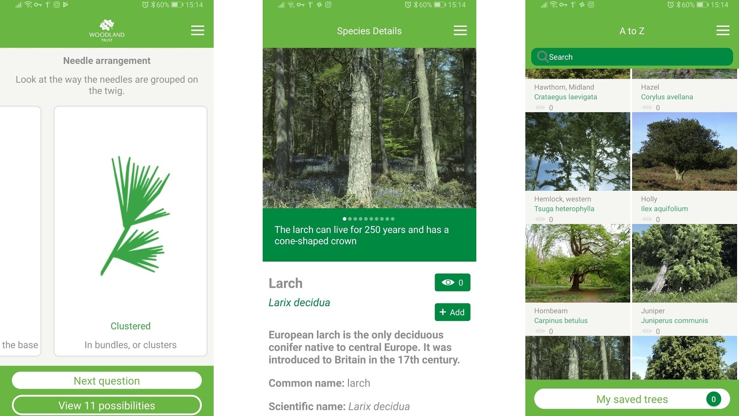 Tree ID – British Trees
