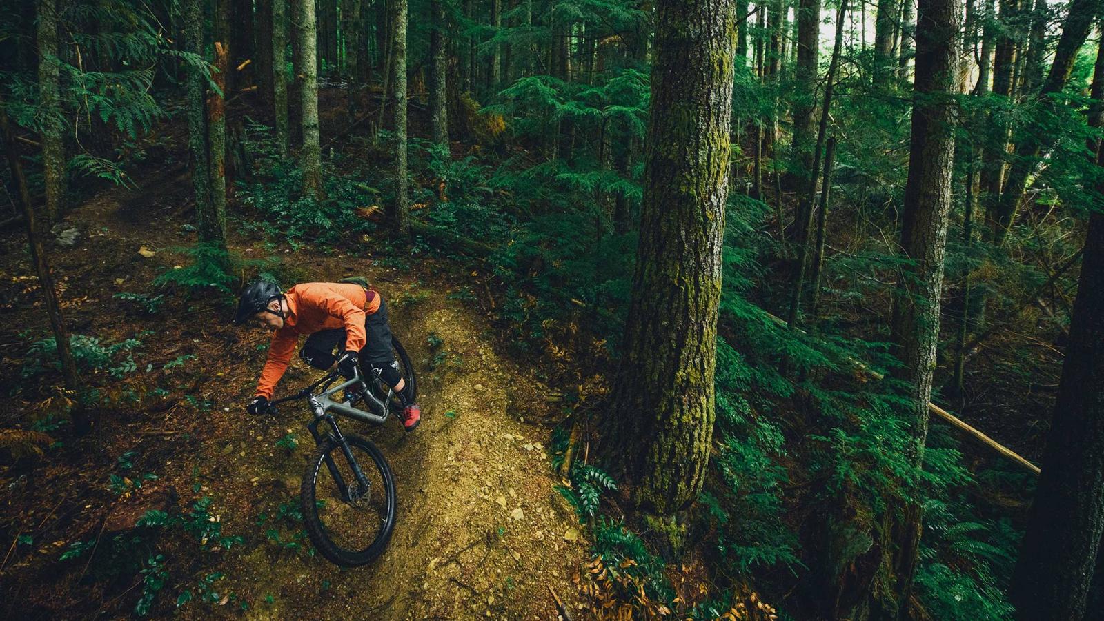 Best mountain bikes under $2500: the trail to enduro mountain bikes where budget meets performance