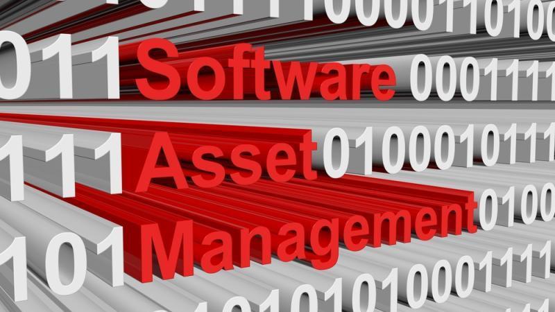 Software asset management, SAM