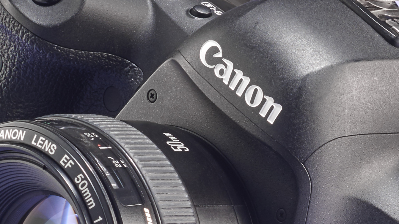 Canon will announce a full-frame mirrorless camera this year