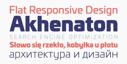 Univia Pro font