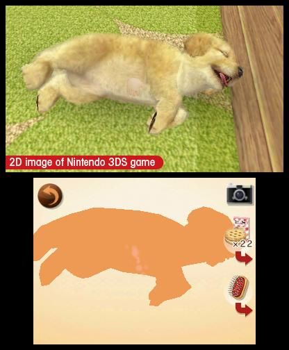 Nintendogs Cats Labbrador