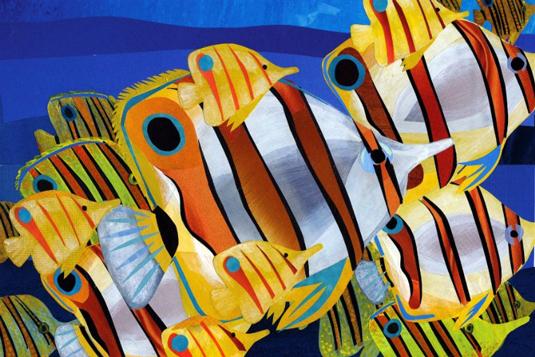 Jonathan Woodward illustration of fish