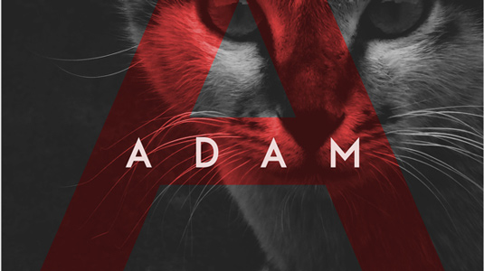 Free font: Adam