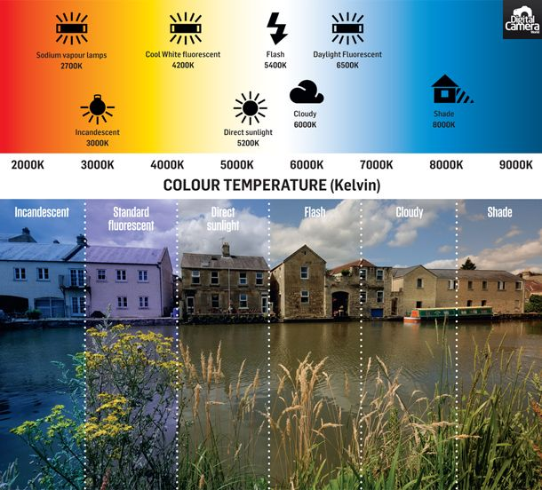 White Balance Explained How Cameras Correct The Color Of