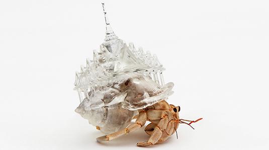 3D art by Aki Inomata