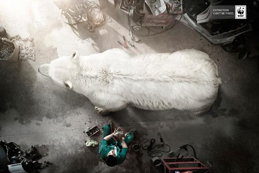 Print ad: WWF