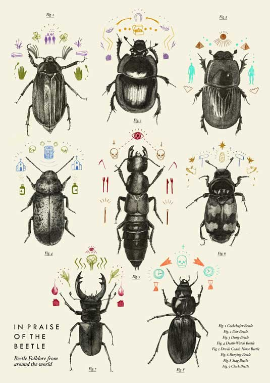 Laura Plant also designed a fold-out poster to accompany her book, In Praise of the Beetle