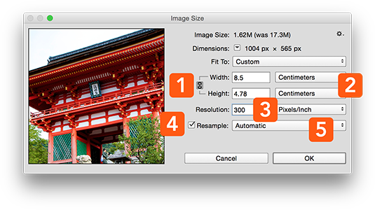 What is DPI? The ultimate guide to image resolution