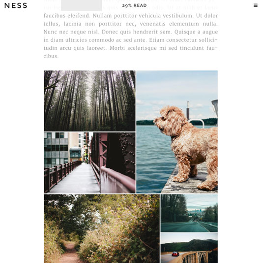 Website templates - Ness