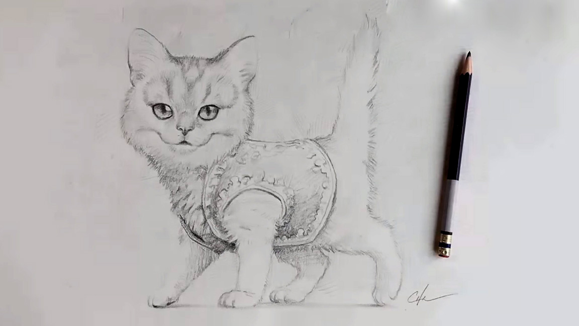 Finished pencil drawing of a cat