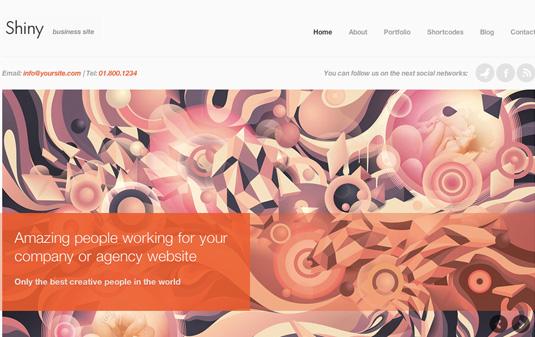 Portfolio WordPress theme - Shiny