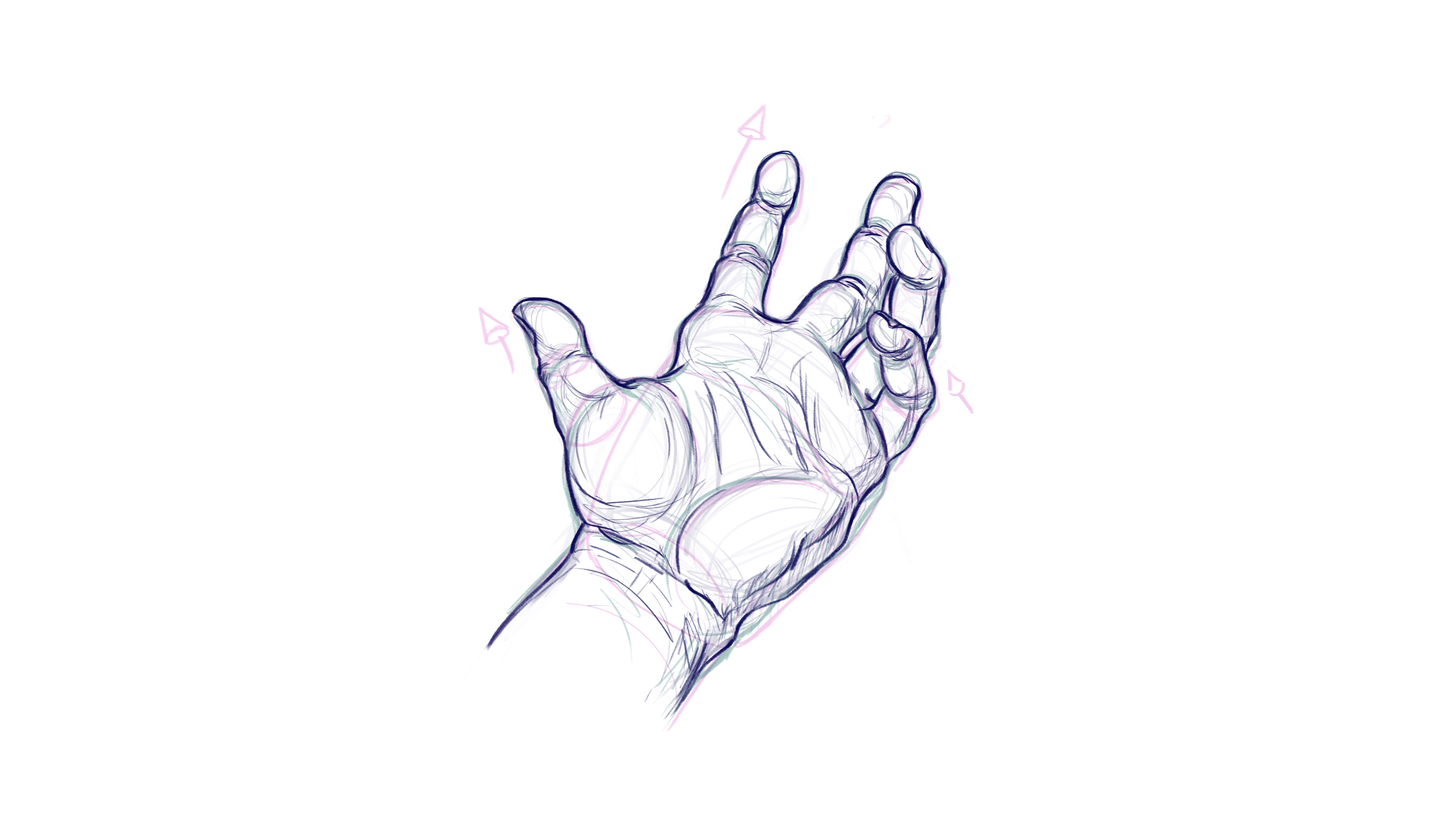 How to draw hands: begin to lay in detail