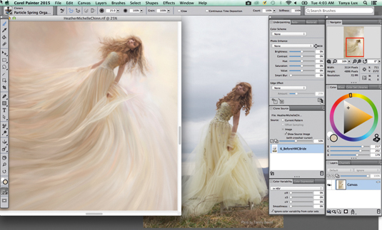 Corel Painter 2015 offers amazing digital brushes