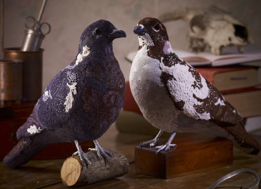 Faux taxidermy - Donya Coward pigeons