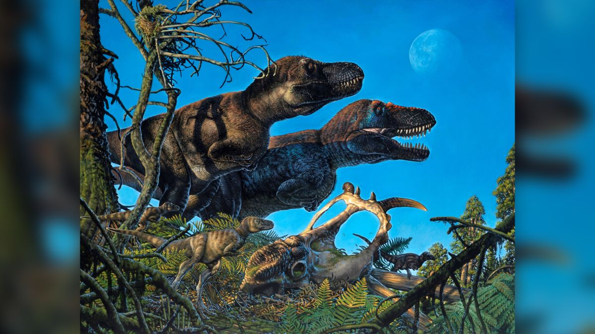 Baby dinosaurs hatched in the Arctic 70 million years ago