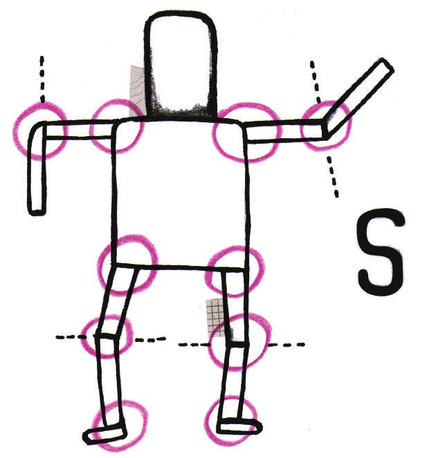Skinning Motion Glossary
