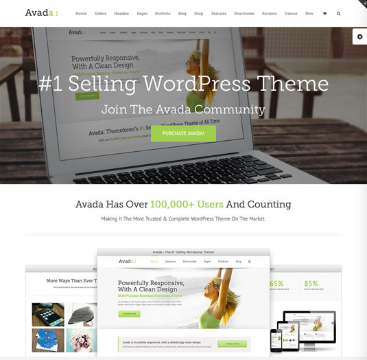 Website templates - Avada