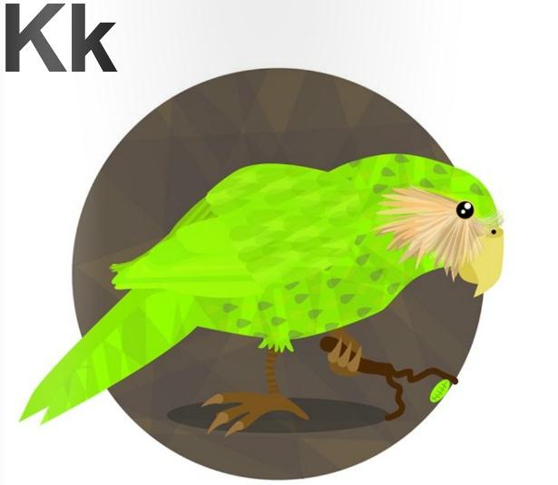 Chris Margerison - Kakapo