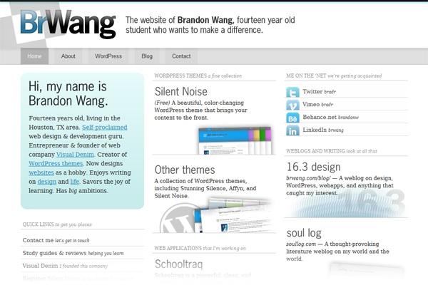 screenshot of brwang.com