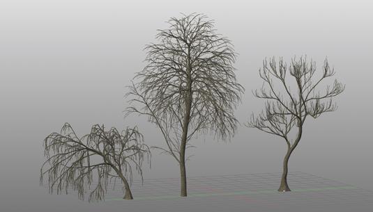 Realistic 3D trees