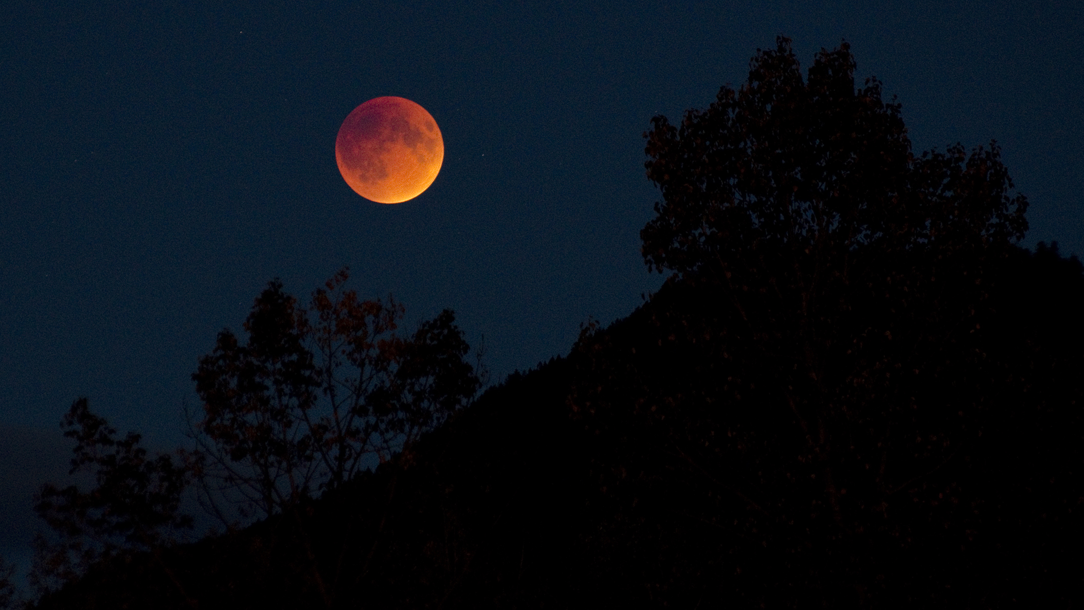 Blood moon with landscape by Darren Robinson