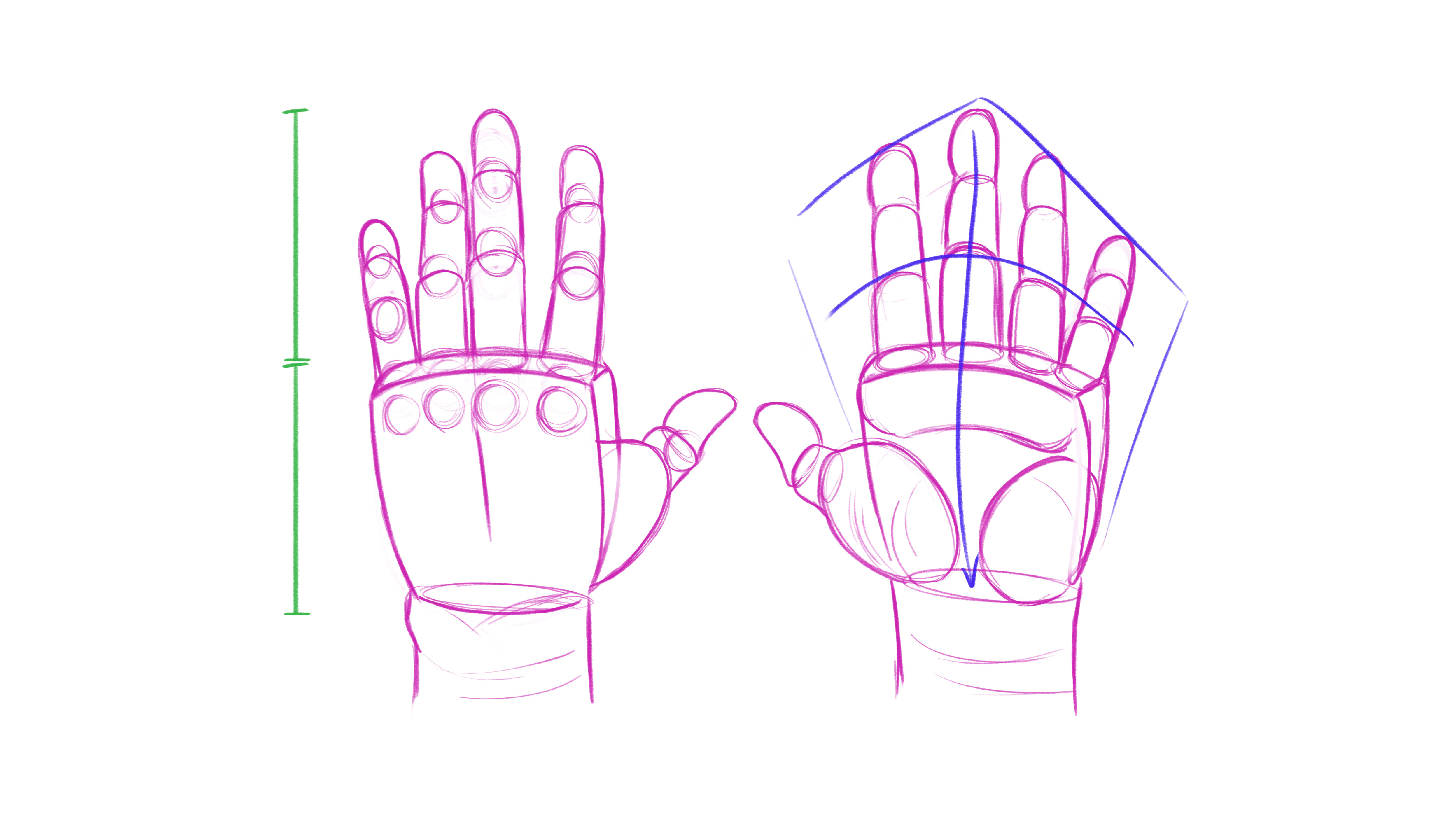 How to draw hands: build it in 3D and then observe