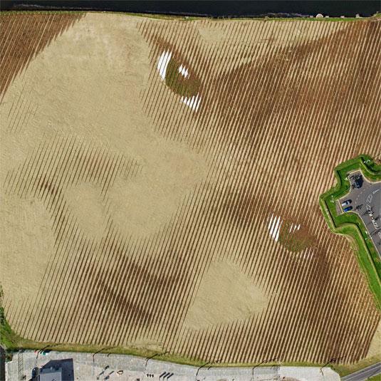 WISH field portrait