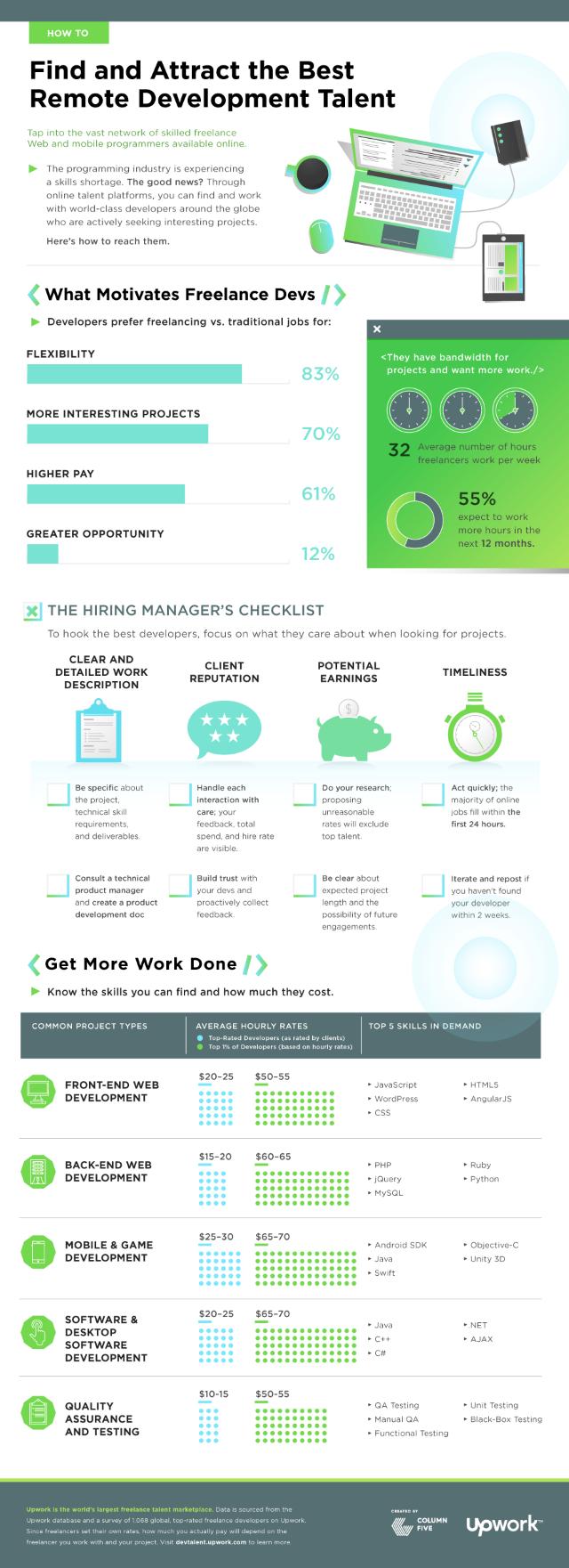 Freelance developer infographic