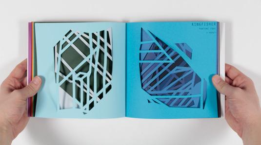 Robert Cottrell, Shape+Colour