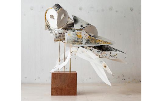 Faux taxidermy - Anna-Wili Highfield Owl