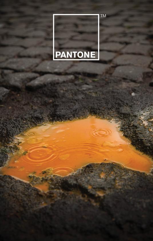 Branding campaigns: Pantone
