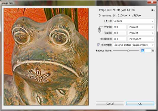 Image size dialog box - unsampled