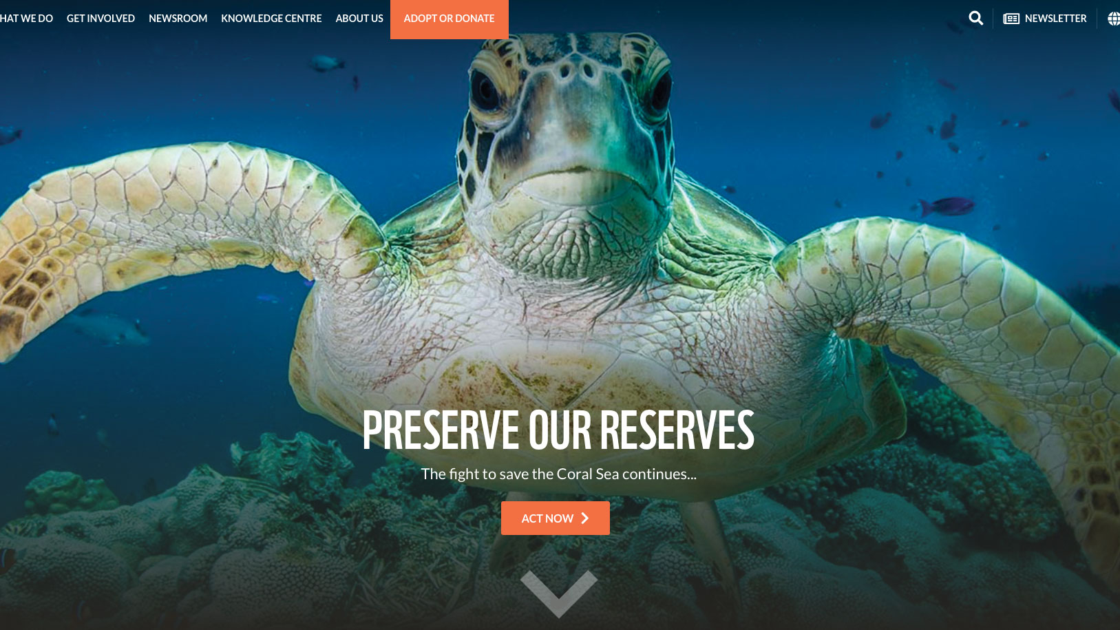 5 sensational new websites to be inspired by