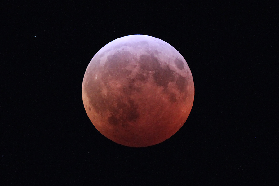 Look up! The Super Flower Blood Moon lunar eclipse is coming May 26