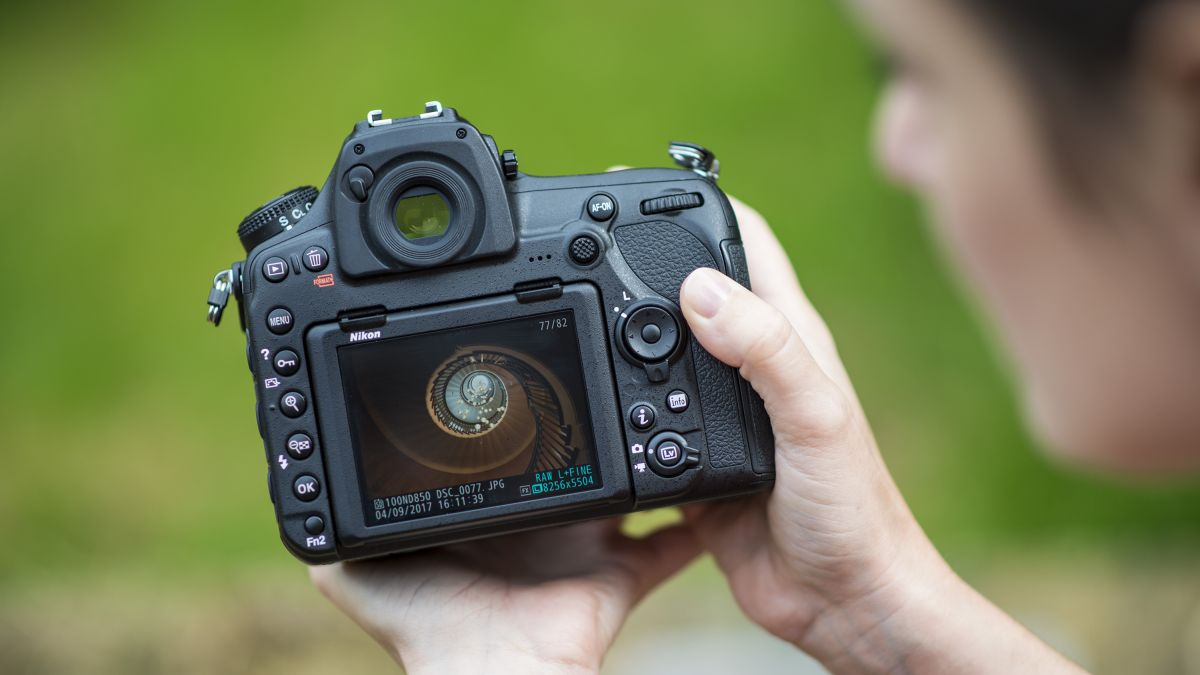 Nikon D850 Sample Images Techradar