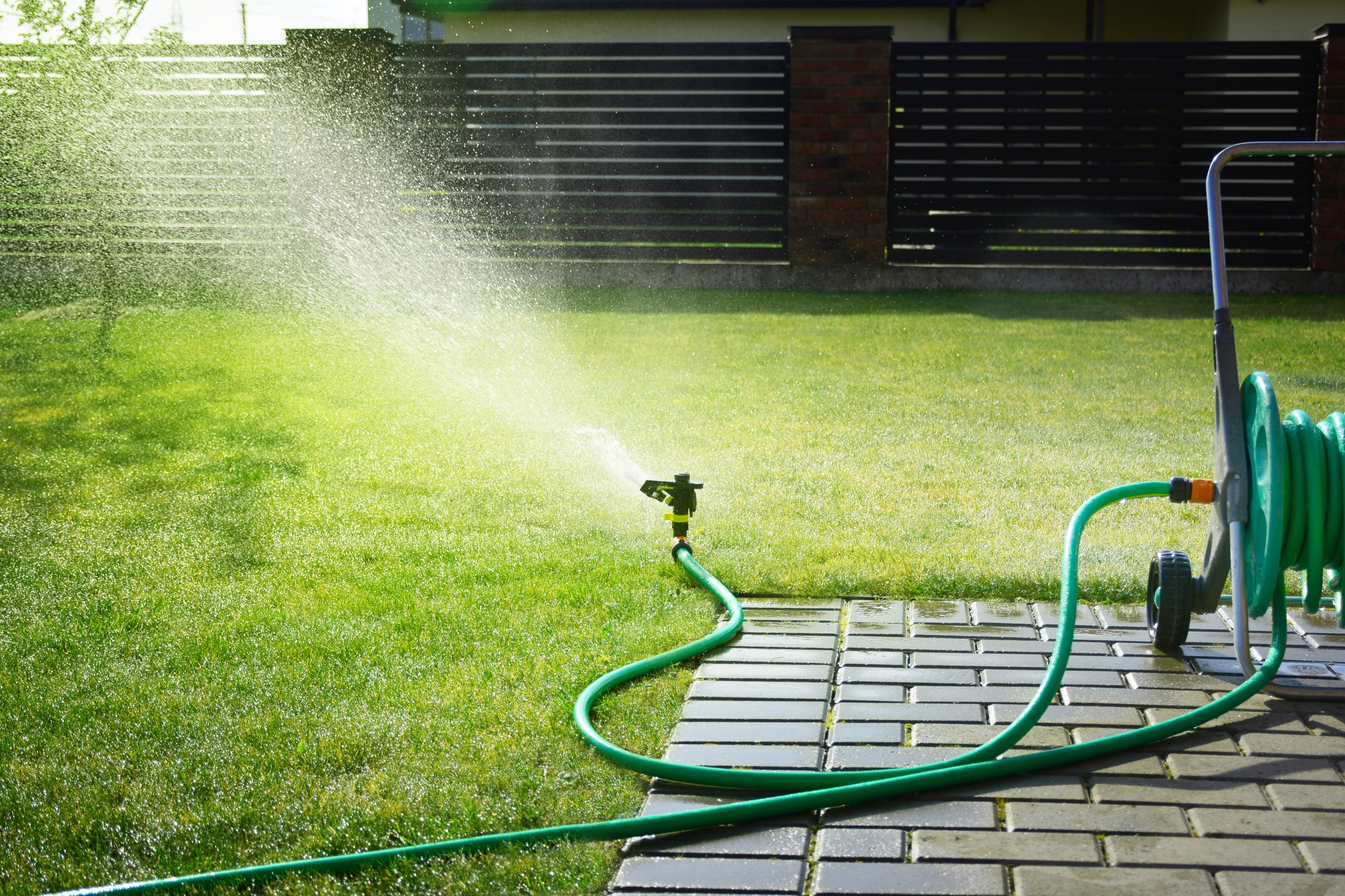 'Mind-eating' amoeba in Texas metropolis's water provide kills 6-year-old D78Hmvr2afvwDspTGKTacd