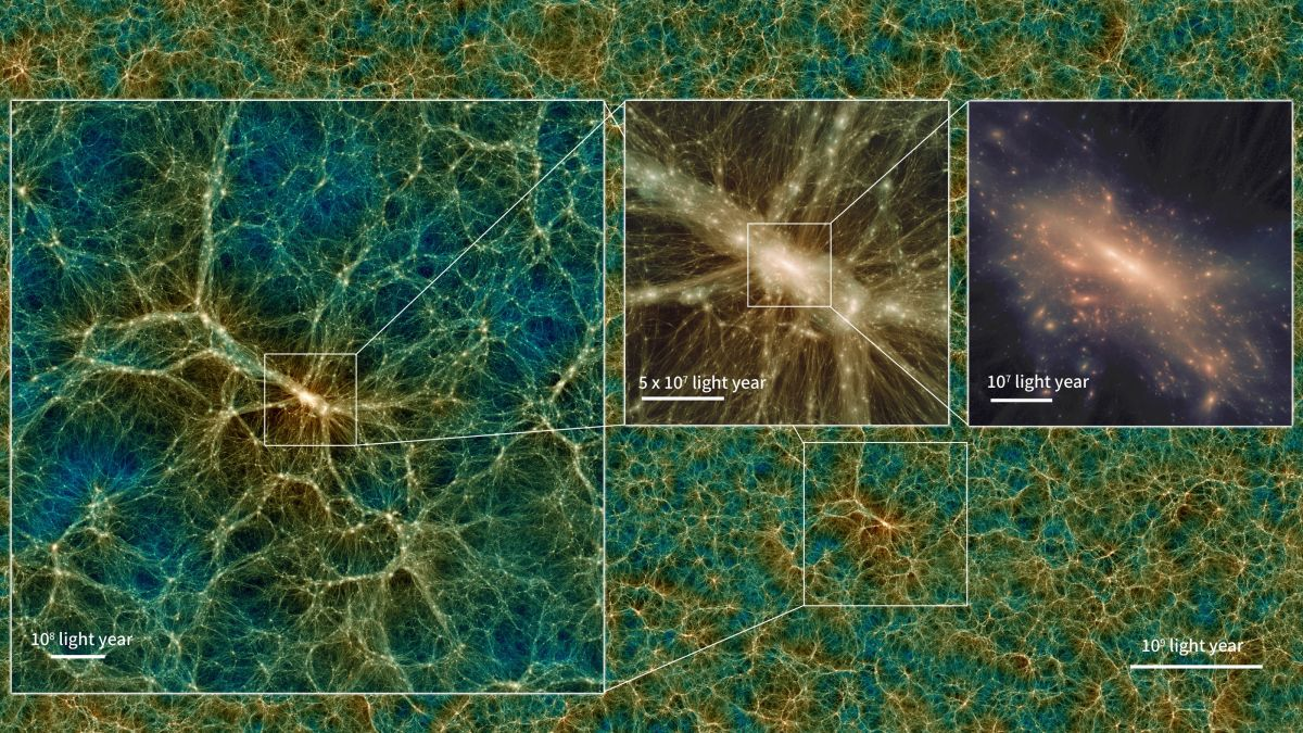Travel through galaxies and the dark matter web in this stunning universe simulation