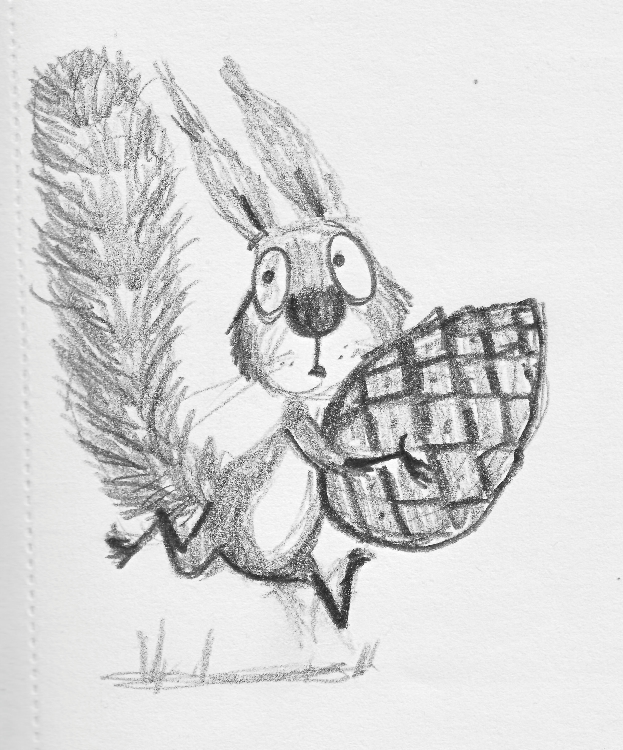 Sketch of Cyril running holding a pinecone