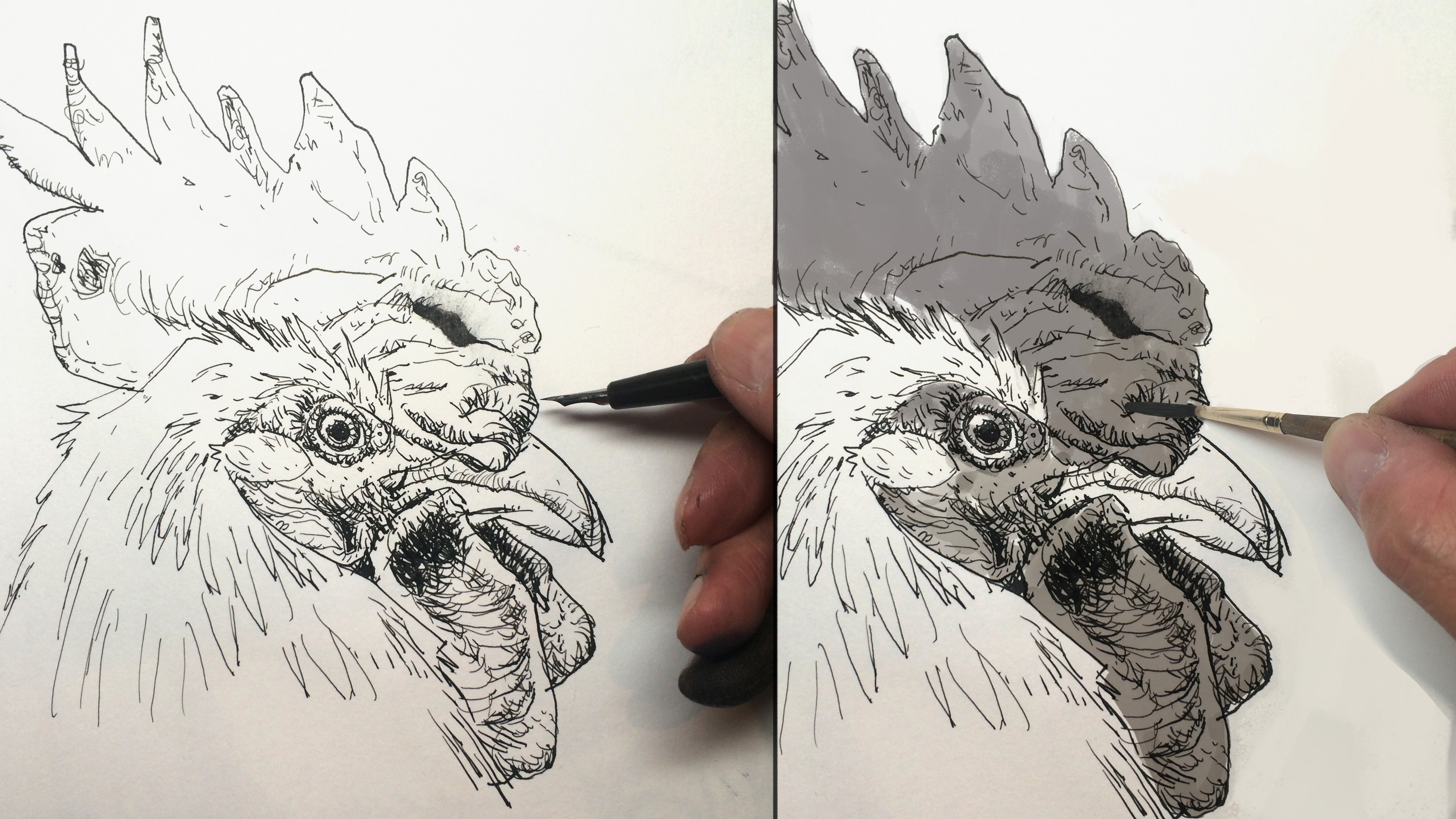 10 Pen And Ink Drawing Techniques And Tips