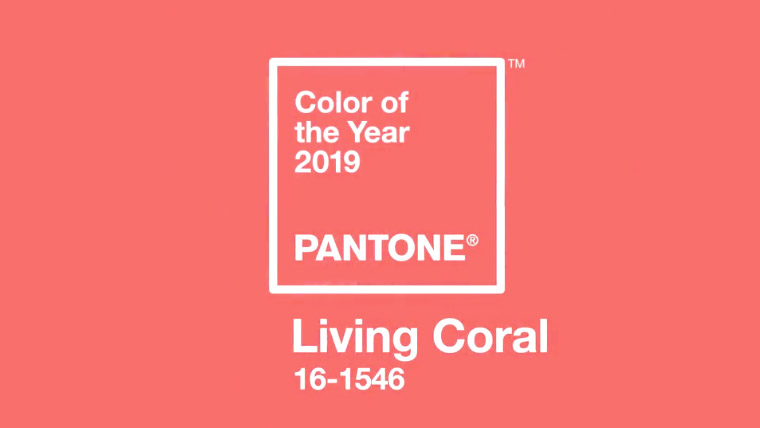 Sample of Living Coral